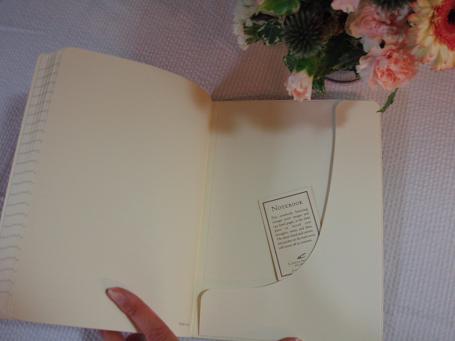 cavalini notebook 2